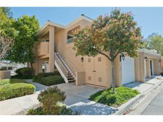 24003 Arroyo Park Drive #73, Valencia, CA 91355 (#SR17060680) :: The Fineman Suarez Team