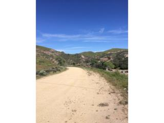 0 S Agua Dulce Canyon Road S, Agua Dulce, CA 91390 (#SR17061192) :: Paris and Connor MacIvor