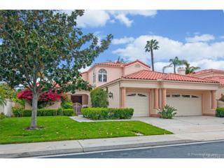 14326 Calle Andalucia, San Diego (City), CA 92130 (#SR17061496) :: Paris and Connor MacIvor