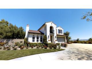26103 Emerald Court, Valencia, CA 91381 (#SR17080630) :: Paris and Connor MacIvor