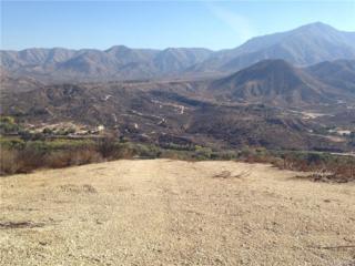 0 Soledad Canyon Road, Acton, CA 93510 (#SR17083223) :: Paris and Connor MacIvor