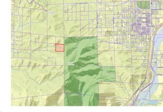 0 Vac/2 Mi N Soledad Canyon Rd/2, Acton, CA 93510 (#SR17083742) :: Paris and Connor MacIvor