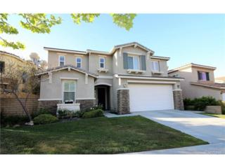 17613 Wren Drive, Canyon Country, CA 91387 (#SR17086819) :: The Fineman Suarez Team