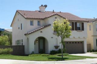 17502 Gladesworth Lane, Canyon Country, CA 91387 (#SR17087126) :: The Fineman Suarez Team