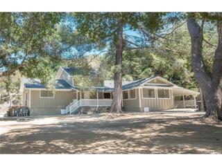 15269 Iron Canyon Road, Canyon Country, CA 91387 (#SR17117447) :: Paris and Connor MacIvor