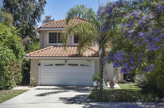 729 Chinook Drive, Ventura, CA 93001 (#217007535) :: RE/MAX Gold Coast Realtors