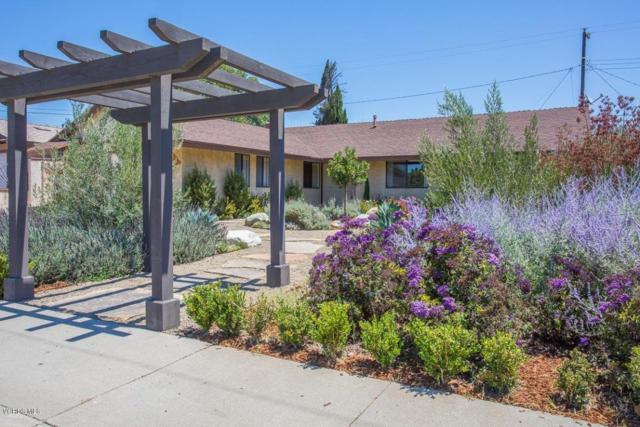 165 Walden Street, Santa Paula, CA 93060 (#217007547) :: Eric Evarts Real Estate Group