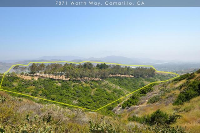 7871 Worth Way, Camarillo, CA 93012 (#217007746) :: The Fineman Suarez Team