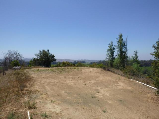 E La Loma Avenue, Somis, CA 93066 (#217009547) :: California Lifestyles Realty Group