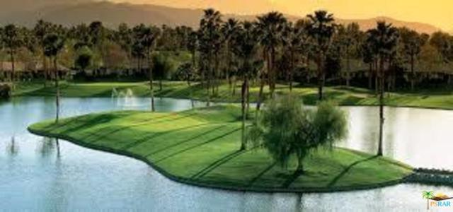 38533 Nasturtium Way, Palm Desert, CA 92211 (#17268906PS) :: The Fineman Suarez Team