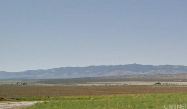 0 Sue Avenue And 218Th St West, Rosamond, CA  (#SR17237698) :: TruLine Realty