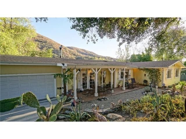 13218 Chrisco Street, Agua Dulce, CA 91390 (#SR17248379) :: The Real Estate Offices of Talbot and Watson