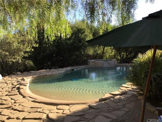34851 Petersen Road, Agua Dulce, CA 91390 (#SR17257017) :: The Real Estate Offices of Talbot and Watson