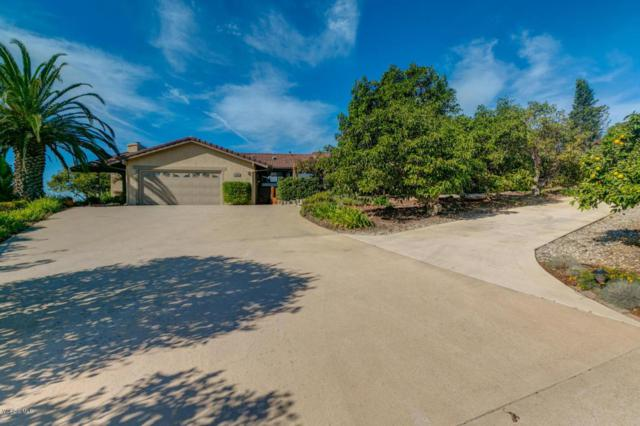 5885 W Greentree Drive, Somis, CA 93066 (#217014491) :: California Lifestyles Realty Group