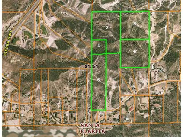 0 Baker Canyon Road, Canyon Country, CA 91390 (#SR18000704) :: Lydia Gable Realty Group