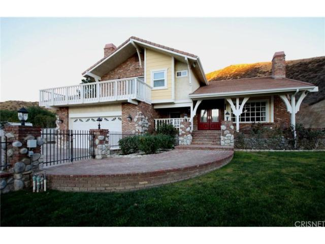 29500 San Francisquito Canyon Road, Saugus, CA 91390 (#SR18009487) :: The Real Estate Offices of Talbot and Watson