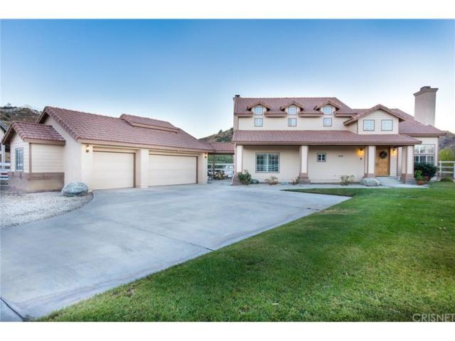 1834 Shadow Canyon Road, Acton, CA 93510 (#SR18009549) :: Paris and Connor MacIvor