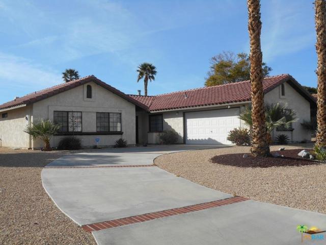 9761 Brookline Avenue, Desert Hot Springs, CA 92240 (#18306000PS) :: Paris and Connor MacIvor