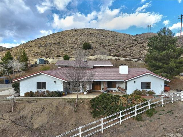 6600 Godde Hill Road, Leona Valley, CA 93551 (#SR18039130) :: The Real Estate Offices of Talbot and Watson