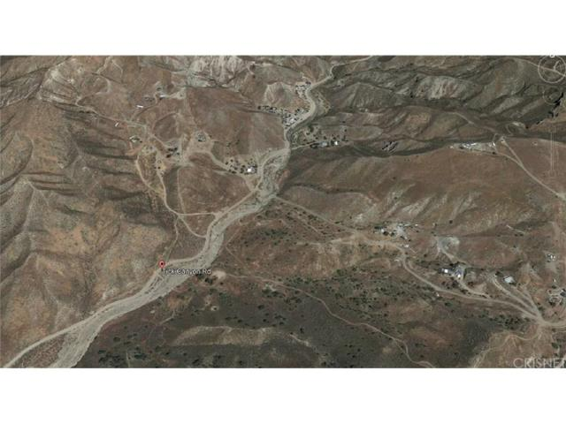 0 Tick Canyon, Agua Dulce, CA  (#SR18043113) :: The Real Estate Offices of Talbot and Watson