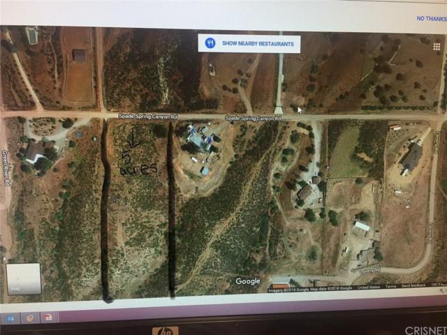 0 Vac/Spade Spr Canyon Drt /Vic, Agua Dulce, CA 91350 (#SR18049133) :: The Real Estate Offices of Talbot and Watson