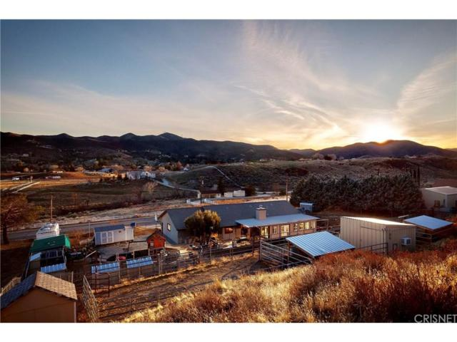 9231 Elizabeth Lake Road, Leona Valley, CA 93551 (#SR18055709) :: The Real Estate Offices of Talbot and Watson