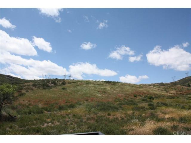 99999 Vac/Bouquet Cyn/Vic 95 Stw, Leona Valley, CA 93551 (#SR18055744) :: The Real Estate Offices of Talbot and Watson