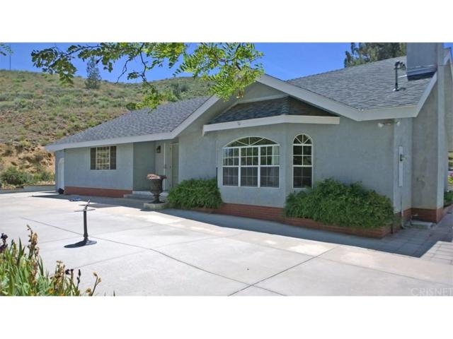 13136 Elizabeth Lake, Leona Valley, CA 93532 (#SR18060756) :: The Real Estate Offices of Talbot and Watson