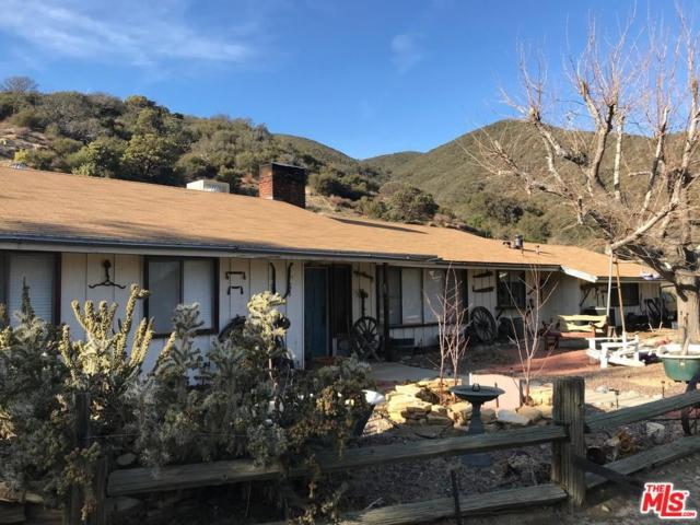 11661 Lonesome Valley Road, Leona Valley, CA 93551 (#18324500) :: The Real Estate Offices of Talbot and Watson