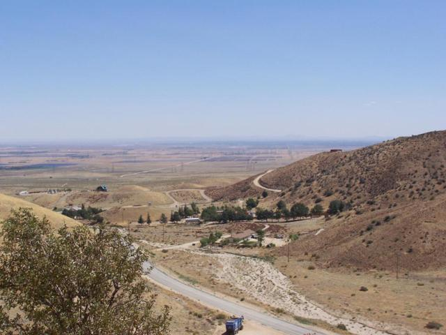 0 0 MUNZ RANCH RD./ AVE. J8 Road, Leona Valley, CA 93551 (#218003216) :: The Real Estate Offices of Talbot and Watson