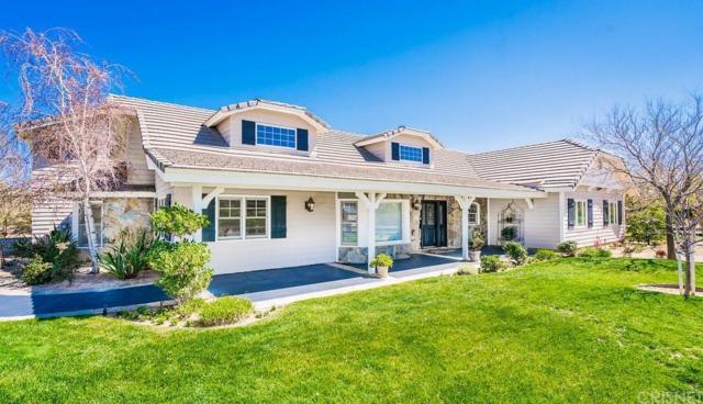 34056 Agua Dulce Canyon Road, Agua Dulce, CA 91390 (#SR18069781) :: Paris and Connor MacIvor