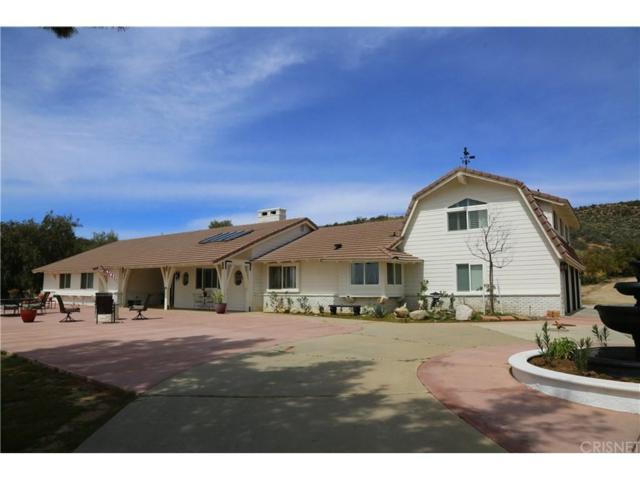 10439 Sierra Highway Road, Agua Dulce, CA 91390 (#SR18078295) :: Paris and Connor MacIvor