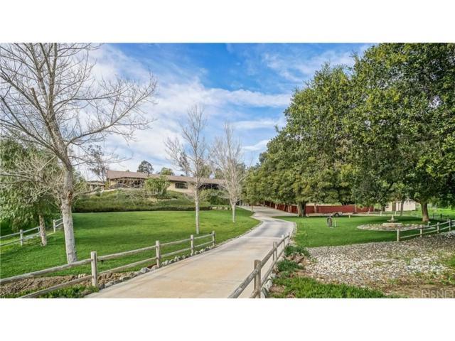 15127 Iron Canyon Road, Canyon Country, CA 91387 (#SR18076153) :: Paris and Connor MacIvor