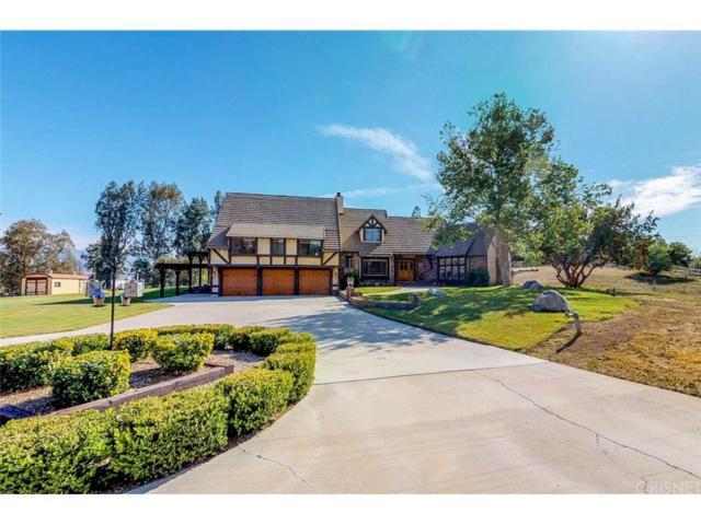 32630 Agua Dulce Canyon Road, Agua Dulce, CA 91390 (#SR18097522) :: Lydia Gable Realty Group