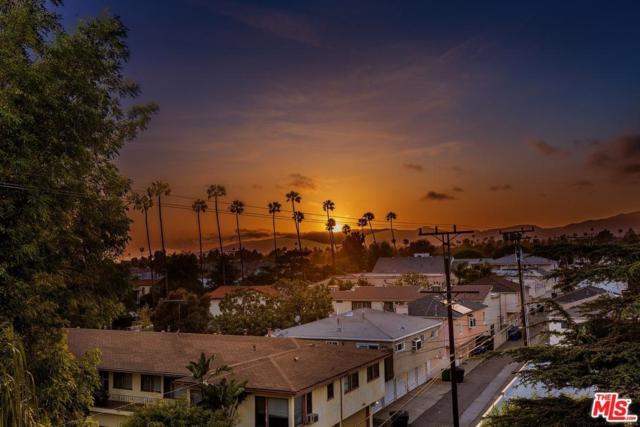 900 Euclid Street #401, Santa Monica, CA 90403 (#18346668) :: The Fineman Suarez Team