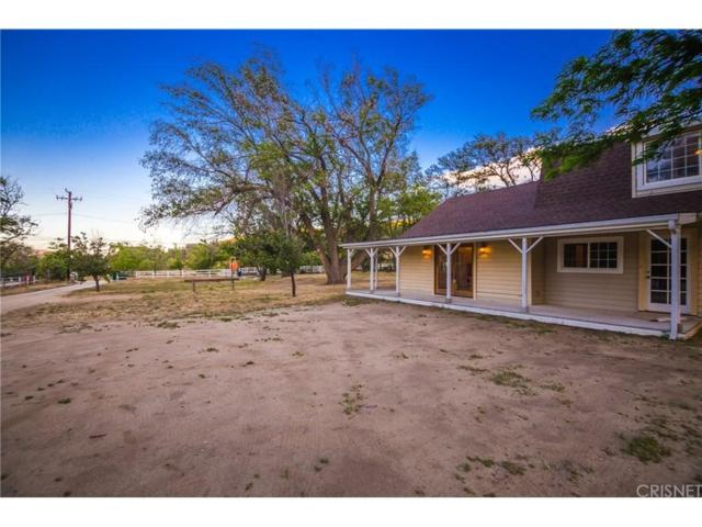 40241 W 107TH Street W, Leona Valley, CA 93551 (#SR18124467) :: The Real Estate Offices of Talbot and Watson