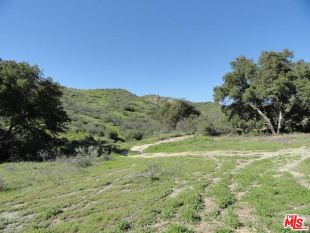 30883 N Stone Creek Road, Castaic, CA 91384 (#18355252) :: Paris and Connor MacIvor
