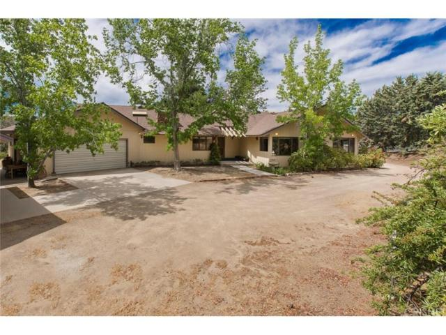 9549 Northside Drive, Leona Valley, CA 93551 (#SR18144127) :: The Real Estate Offices of Talbot and Watson