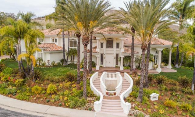 25867 Shady Grove Place, Calabasas, CA 91302 (#218007732) :: Golden Palm Properties