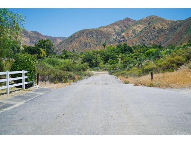 1 Warm Springs Drive, Canyon Country, CA  (#SR18150303) :: Heber's Homes