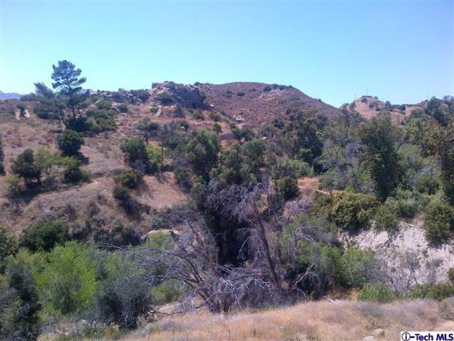 Browns Canyon Road Apn 5, Chatsworth, CA 91311 (#818003351) :: Lydia Gable Realty Group
