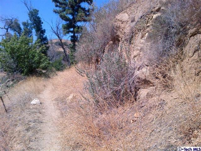 11800 Browns Canyon Road, Chatsworth, CA 91311 (#818003350) :: Lydia Gable Realty Group