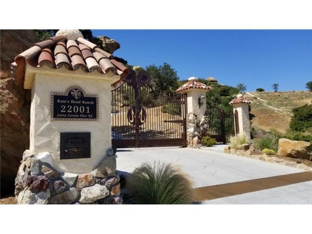 22001 Santa Susana Pass Road, Chatsworth, CA 91311 (#SR18170113) :: TruLine Realty