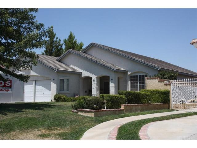 4619 Cinnabar Avenue, Palmdale, CA 93551 (#SR18180922) :: The Real Estate Offices of Talbot and Watson