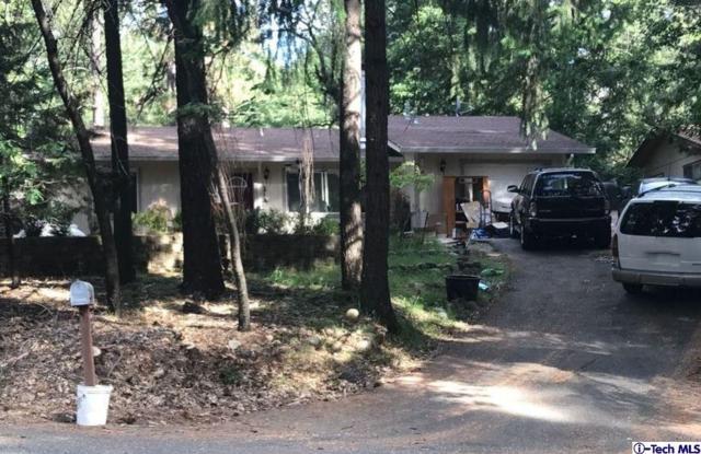 5546 Sierra Springs Drive, Pollock Pines, CA 95726 (#318003274) :: Lydia Gable Realty Group