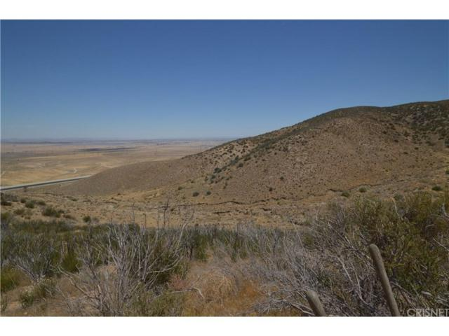 0 Vac/Vic 140Th Stw/Aqueduct, Leona Valley, CA 93551 (#SR18202075) :: The Real Estate Offices of Talbot and Watson