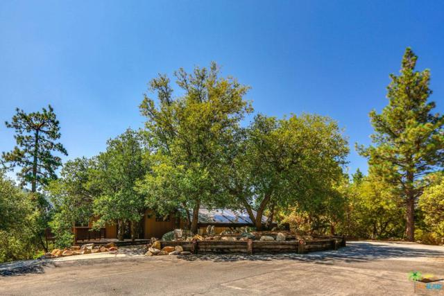 54711 Falling Leaf Drive, Idyllwild, CA 92549 (#18376062PS) :: Fred Howard Real Estate Team