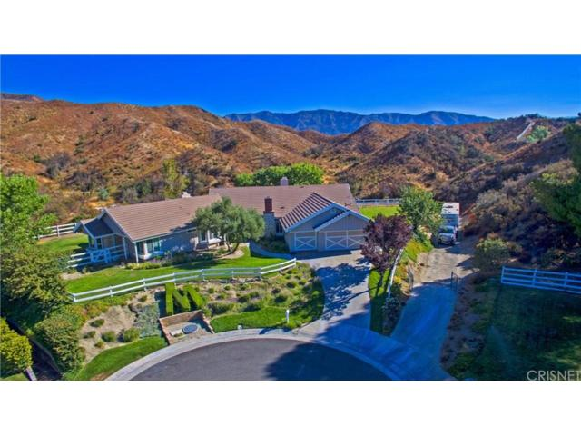 26841 Chuckwagon Place, Canyon Country, CA 91387 (#SR18209437) :: Carie Heber Realty Group