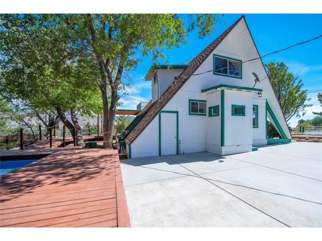 40021 92ND Street W, Leona Valley, CA 93551 (#SR18212319) :: The Real Estate Offices of Talbot and Watson