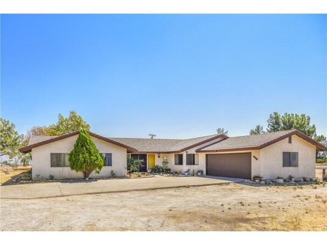 30809 Desert Shadow Road, Castaic, CA 91384 (#SR18214595) :: Carie Heber Realty Group